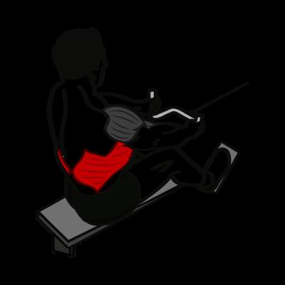Rudern Seilzug Übung - Richtige Ausführung