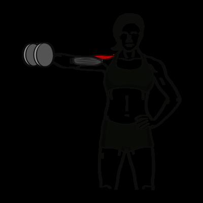 Seitheben einarmig Übung - Richtige Ausführung