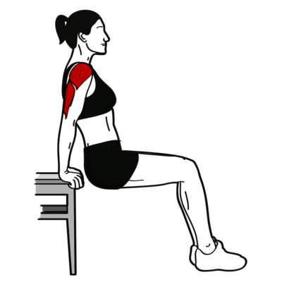 Dips am Stuhl Übung - Richtige Ausführung