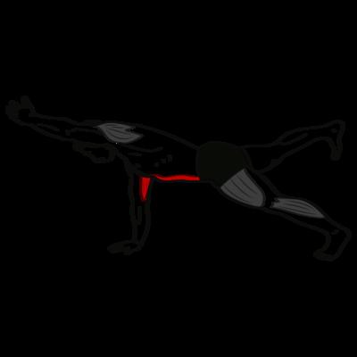 Planke diagonal Übung - Richtige Ausführung