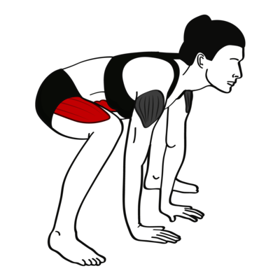 Frogger Übung - Richtige Ausführung