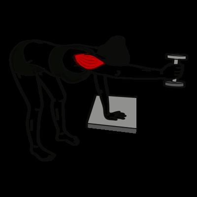 Frontheben mit geneigtem Oberkörper Übung - Richtige Ausführung