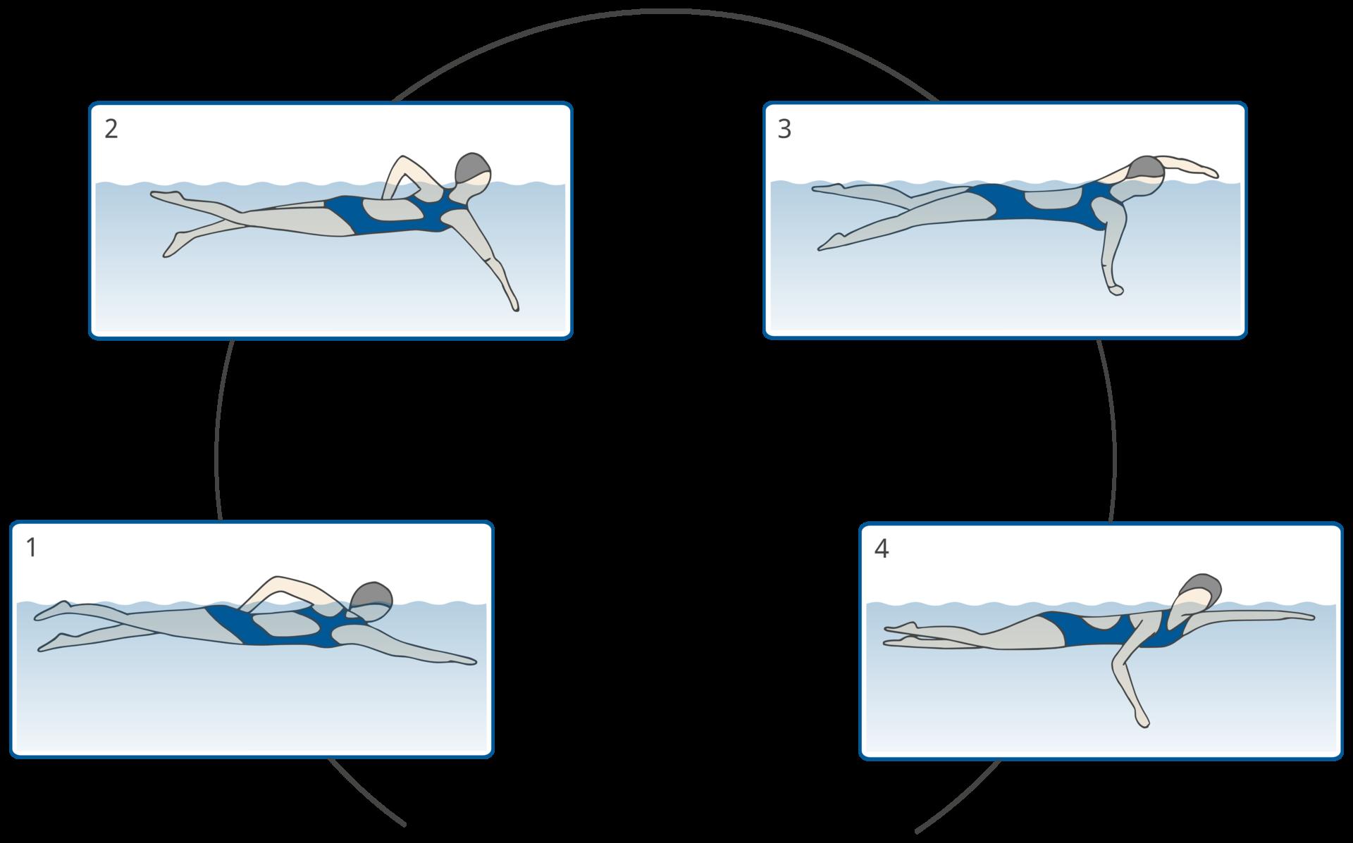 Techniken des Kraulschwimmens