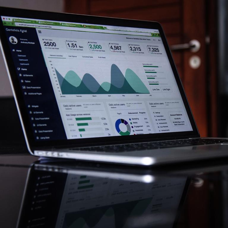 Übersicht und Nährwerttabellen - Laptop ein Diagramm und Zahlen anzeigt