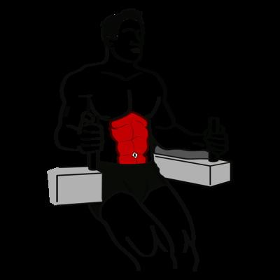 Beinheben am Gerät im Unterarmstütz Übung - Richtige Ausführung