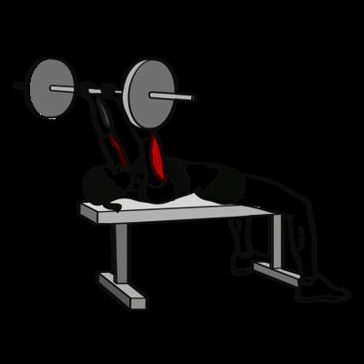 Skull-Crusher Langhantel Übung - Richtige Ausführung