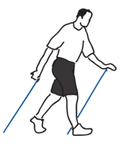 Nordic Walking Phase 4 - Technikschulung
