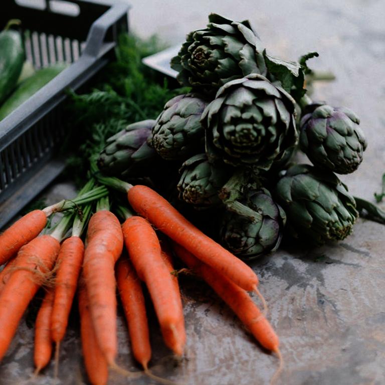 Nahrungsmittel - Karotten und Artischocken