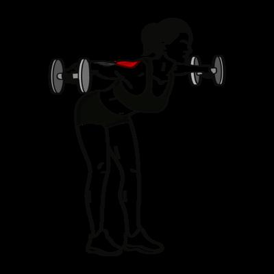 Seitheben vorgebeugt Übung - Richtige Ausführung