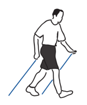 Nordic Walking Phase 3 - Technikschulung