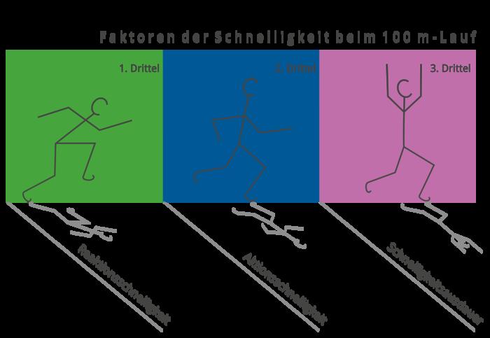 100m-Lauf - Faktoren der Schnelligkeit