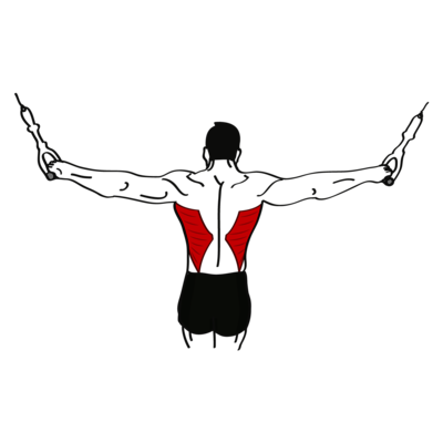 Kabelzüge über Kreuz Übung - Richtige Ausführung